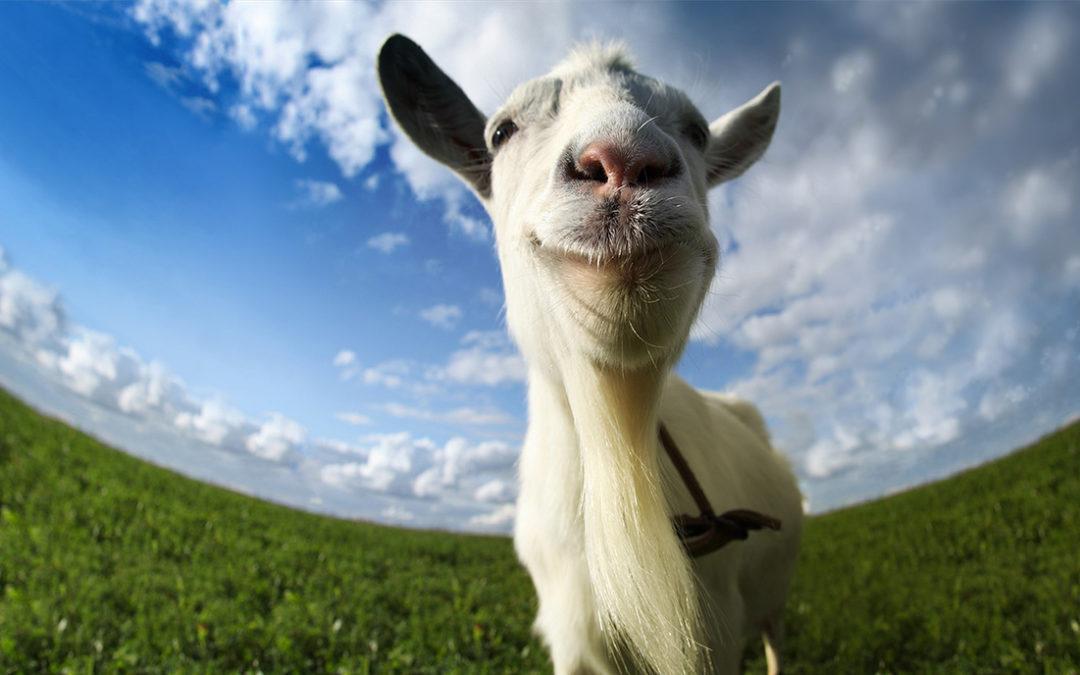 Goat Simulator: Kreativa projektet som blev miljonsuccé